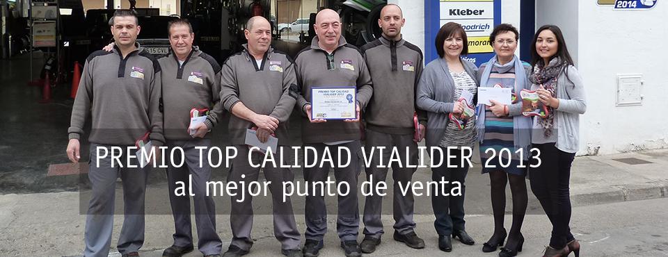 Top Calidad Vialider 2013